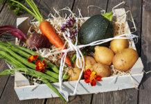 Jakie są zasady transportu warzyw i owoców