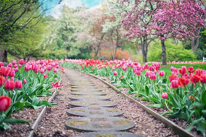 3 rzeczy, na które warto zwrócić uwagę, planując wymarzony dom i ogród